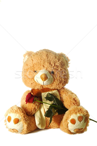 Juguete tener Rose Red nino naranja Foto stock © taden