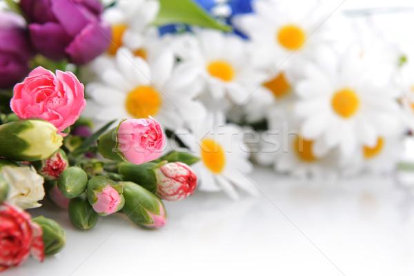 букет цветы красочный гвоздика другой Сток-фото © taden