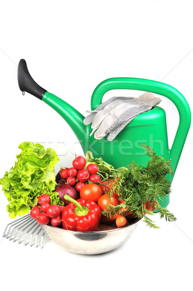 watering can and  vegetables. Stock photo © taden