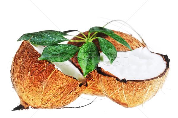 ココナッツ 葉 壊れた 白 ストックフォト © taden
