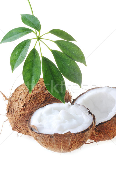 Quebrado maduro coco folhas branco leite Foto stock © taden