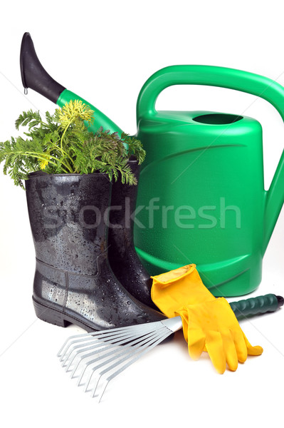 Marchew konewka rękawice charakter Zdjęcia stock © taden