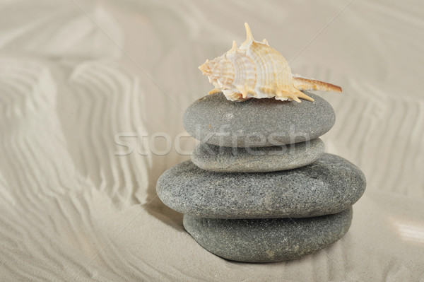 cockleshell and stones  Stock photo © taden