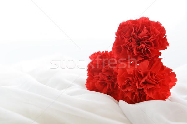 Vermelho branco seda isolado luz Foto stock © taden
