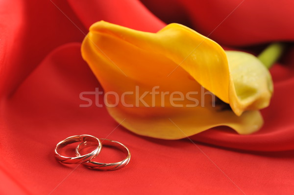 Trouwringen gele bloem Rood computer achtergrond frame Stockfoto © taden
