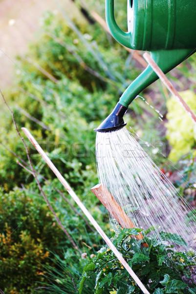 Jardim primavera verão verde trabalho Foto stock © taden