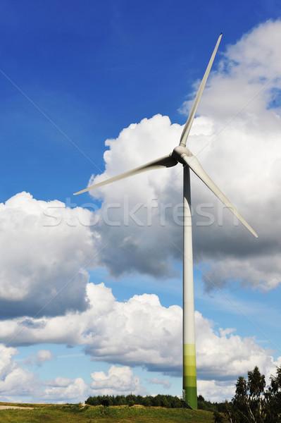 Zdjęcia stock: Pola · Błękitne · niebo · niebo · słońce · zielone