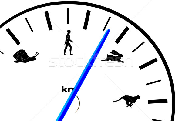 Car speedometer  with animal and human icons Stock photo © taden