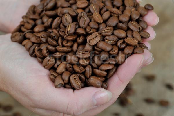 Chicchi di caffè mani tenere caffè Foto d'archivio © taden