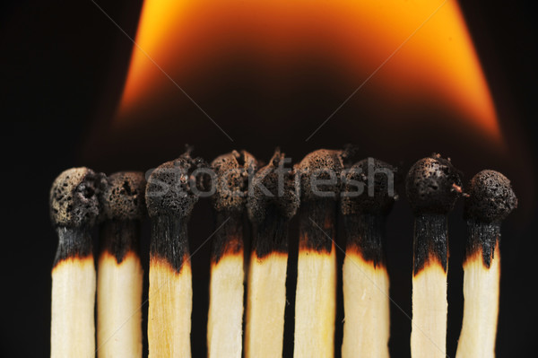 row of matches Stock photo © taden