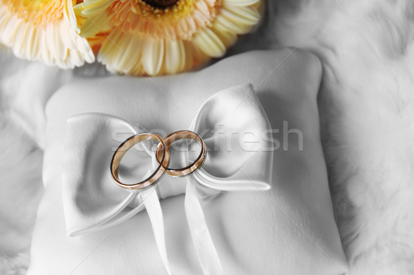 cushion with wedding  rings Stock photo © taden