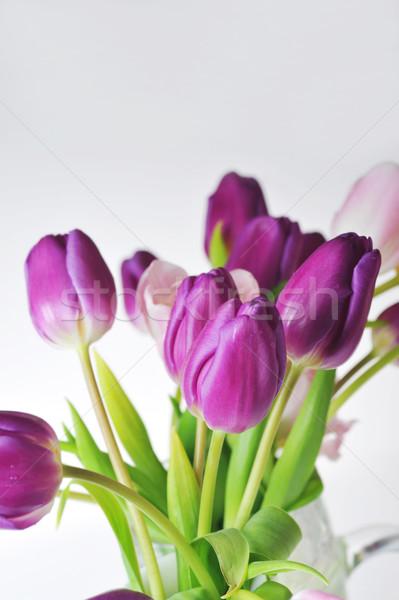 Tulpen boeket veel roze violet bloemen Stockfoto © taden