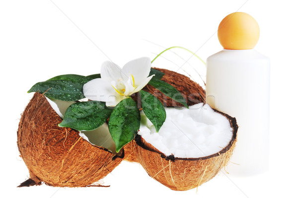 Cocco olio da massaggio corpo bellezza medicina Foto d'archivio © taden