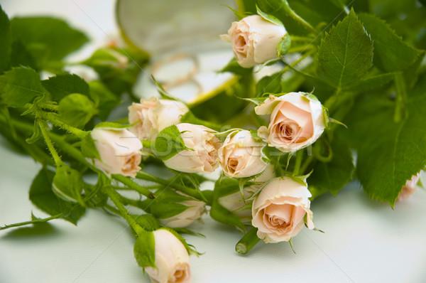 Halkalar güller alyans çiçek gül yaprak Stok fotoğraf © taden