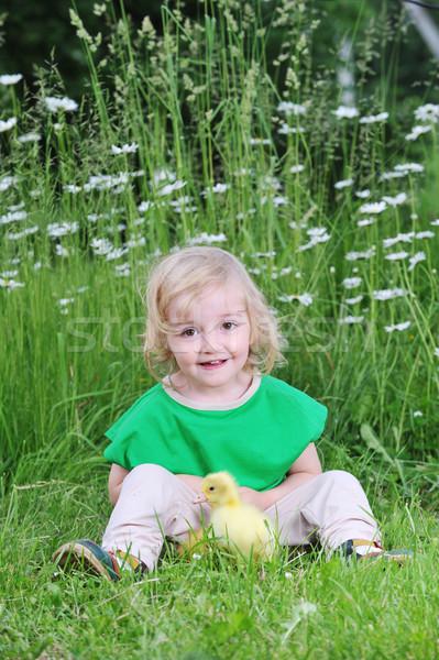 Küçük kız ördek yavrusu oynama kabarık çim çocuk Stok fotoğraf © taden