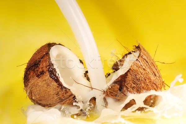 coconut milk splash Stock photo © taden
