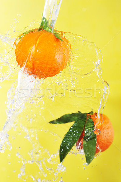 two tangerines and water splashes Stock photo © taden