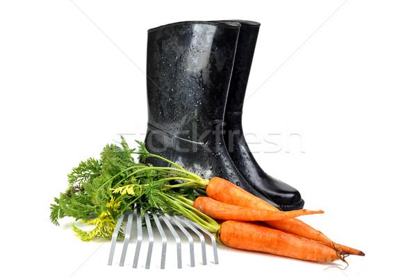 Sárgarépa kerti eszközök gumicsizma gereblye természet munkás Stock fotó © taden