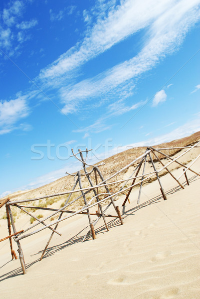 dunes at the Baltic sea Stock photo © taden