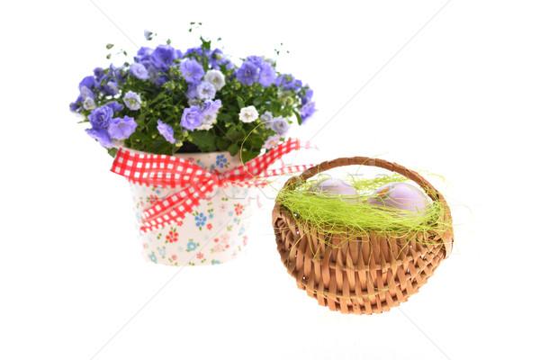 Ostereier blau Blumen Schönheit Eier Band Stock foto © taden