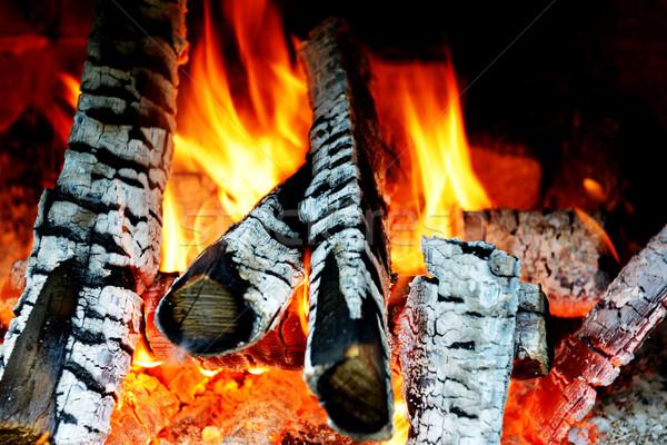 fire in fireplace Stock photo © taden