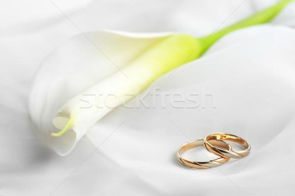 Fehér szövet jegygyűrűk átlátszó közelkép nő Stock fotó © taden