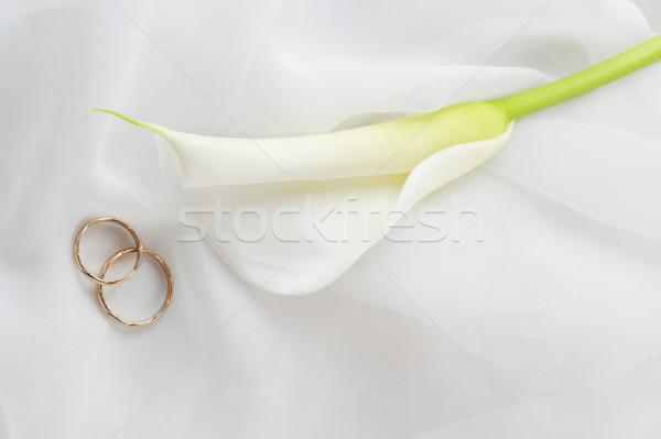 Fedi nuziali fiore bianco bianco materiale wedding foglia Foto d'archivio © taden