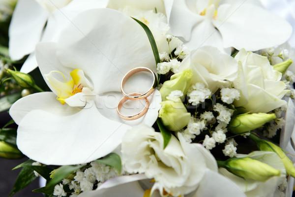 Orchidee fedi nuziali anelli fiori Foto d'archivio © taden