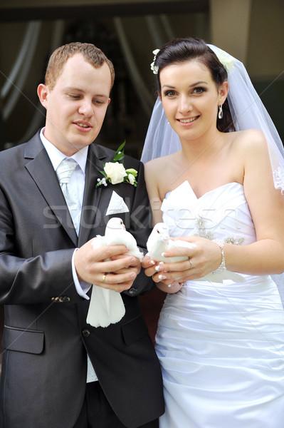Foto stock: Recém-casados · branco · mãos · família