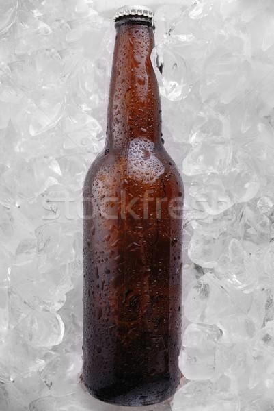 Bierfles bruin ijs emmer condensatie bier Stockfoto © taden