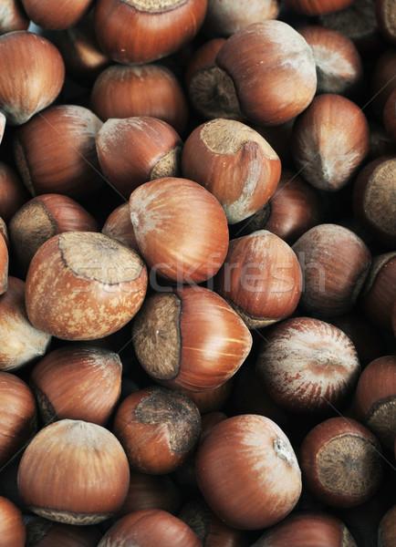 many hazeknuts close up  Stock photo © taden