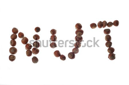 Woord moer hazelnoten witte natuur vruchten Stockfoto © taden