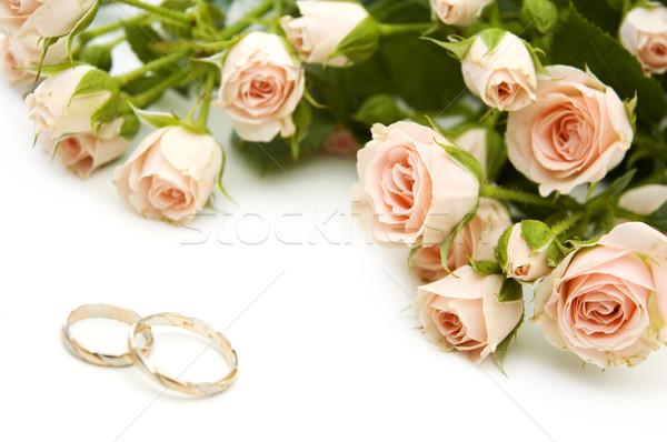 Anillos rosas anillos de boda flor aumentó hoja Foto stock © taden