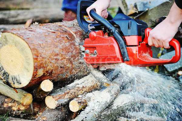 chainsaw  Stock photo © taden