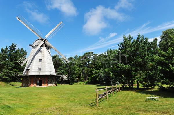 Velho moinho campo árvores verão dia Foto stock © taden