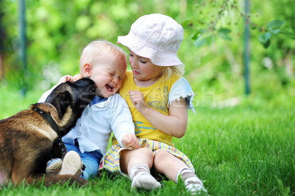children and dog Stock photo © taden