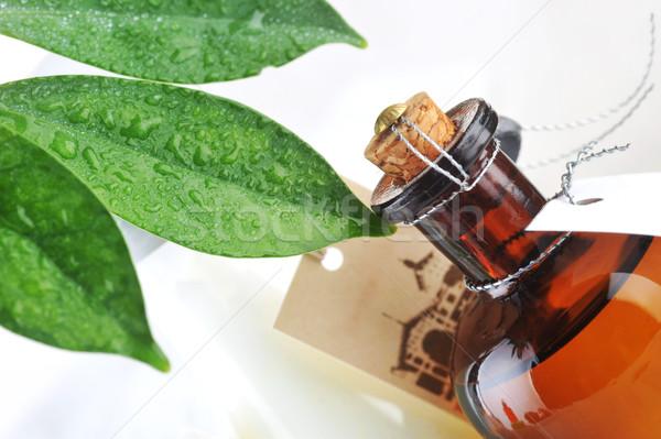 Bottiglia olio da massaggio foglie Foto d'archivio © taden