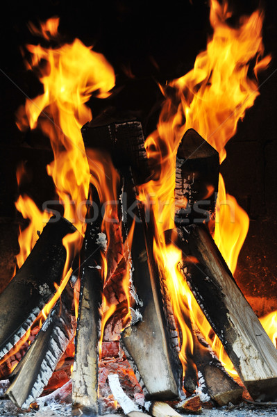 Fényes láng tűz sötét absztrakt természet Stock fotó © taden