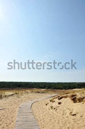 Stock photo: walkway over  sand