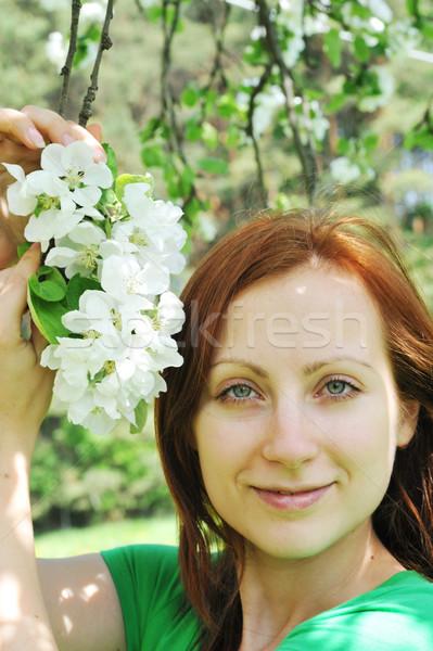 Kadın elma genç kadın ayakta elma ağacı beyaz Stok fotoğraf © taden