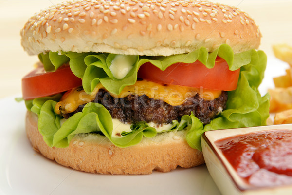 ízletes hamburger étvágygerjesztő sültkrumpli fehér tányér Stock fotó © taden
