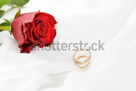 Rosa anelli wedding bianco seta sfondo Foto d'archivio © taden
