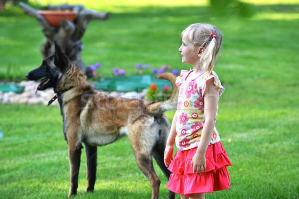 ストックフォト: 少女 · 犬 · 演奏 · 草 · 顔 · 愛