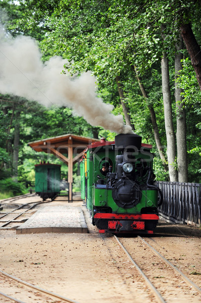 старые небольшой зеленый дым поезд Сток-фото © taden