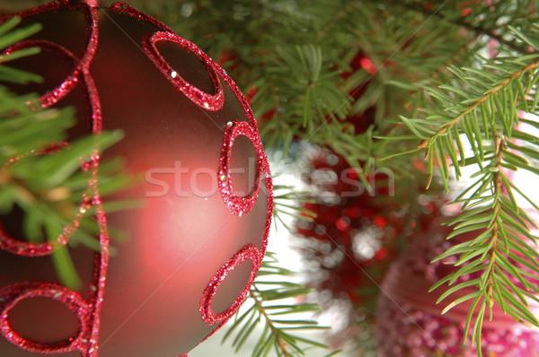 Natale palla rosso albero di natale carta Foto d'archivio © taden