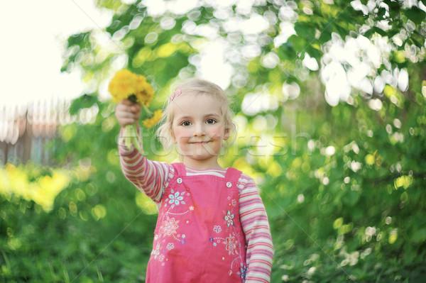 Küçük kız şapka buket karahindiba yüz Stok fotoğraf © taden