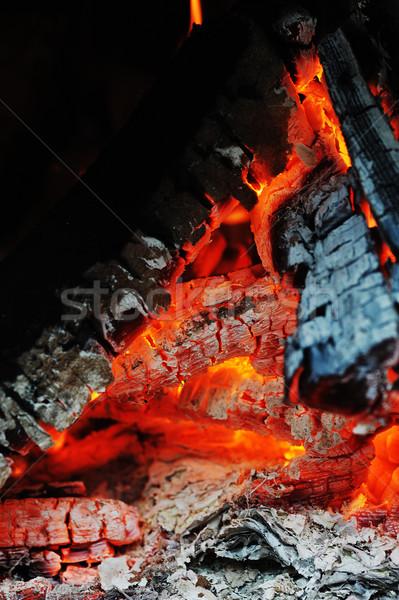 Burning down fire Stock photo © taden