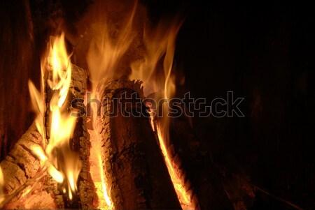 fire in the dark  Stock photo © taden