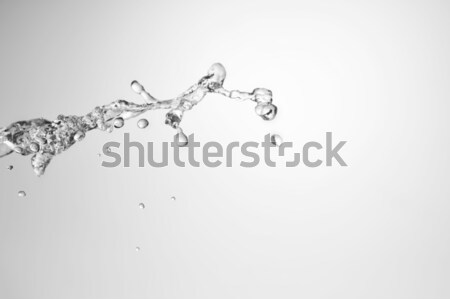 water splash freeze motion Stock photo © taden