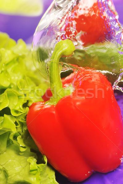 Domates salatalık sıçraması salata mor su Stok fotoğraf © taden